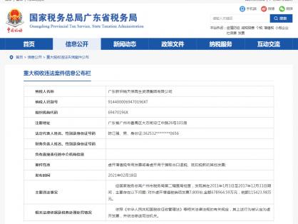 广东某集团公司虚开68亿发票被查